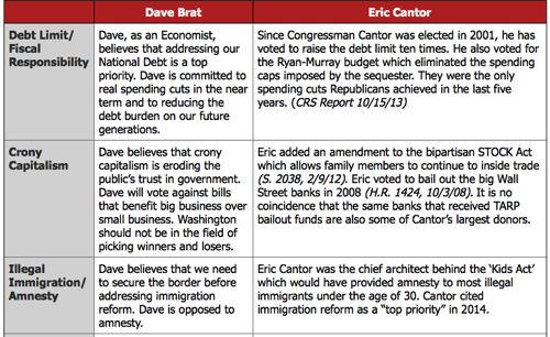 Dave Brat for Congress Issues