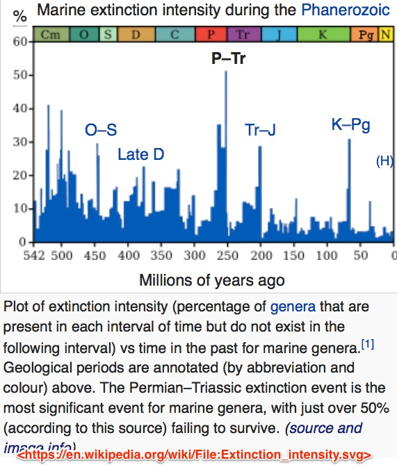 Permian Triassic extinction event Wikipedia the free encyclopedia