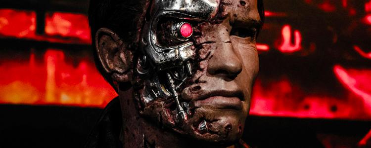 Terminator Google Search