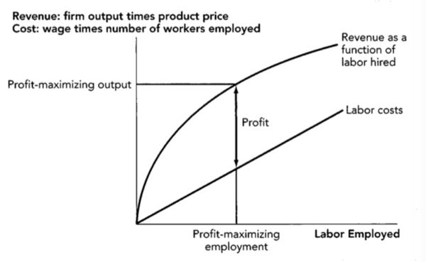 Firm Revenue and Costs