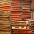 Stacks_and_stacks_of_books