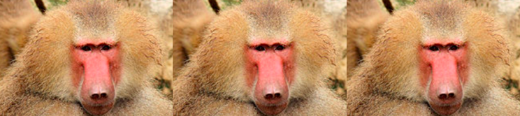Orange Haired Baboons Some Fairly Recent Must and Should Reads