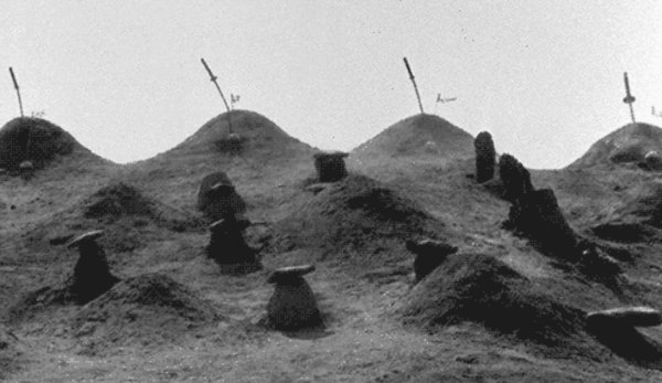 Graves-seven-samurai